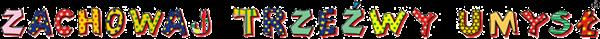 logo - Zachowaj Trzeźwy Umysł
